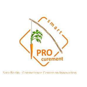 Sara Bedin Logo